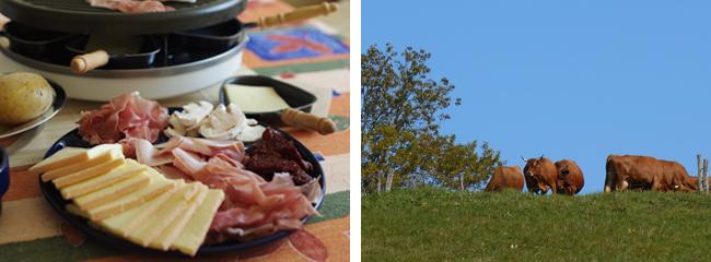 raclette, Accueil, Avressieux, 73240, Savoie, Emmental de Savoie, agriculture