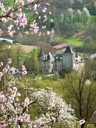 chateau de montfleury, avressieux,73240, savoie,tourisme