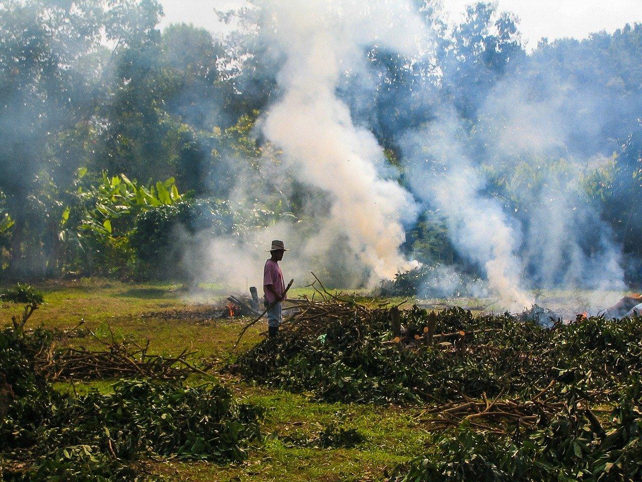 brûlage déchets verts